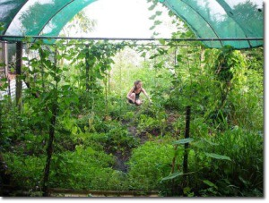 permaculture goddess